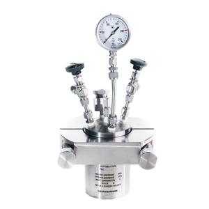 Reaktor wysokociśnieniowy RVD-2-250